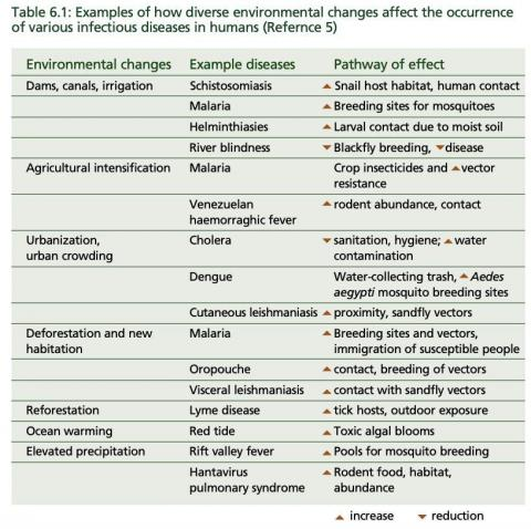 Examples of how climate change could affect the spread of infectious disease.