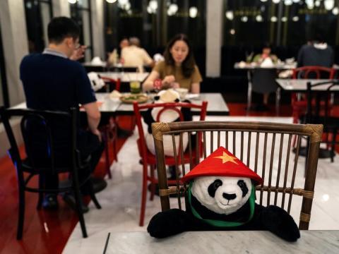 Los osos panda están en las mesas como estrategia para promover el distanciamiento social.