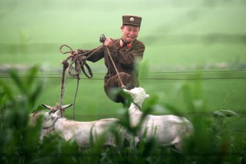 Un soldado norcoreano patea una cabra a orillas del río Yalu en julio de 2009.