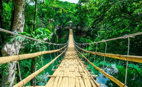 Bohol (Filipinas)