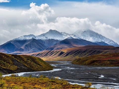 El Parque Nacional Denali cuenta con todo, desde arroyos hasta montañas.