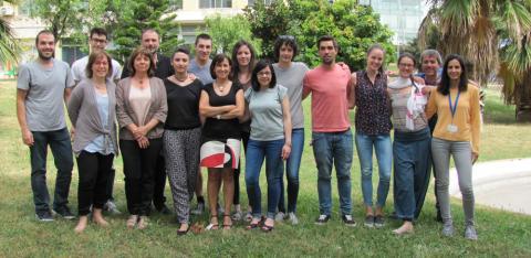 El grupo de Nanobiotecnología para el Diagnóstico