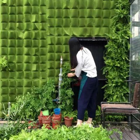 Jardín vertical Duomi