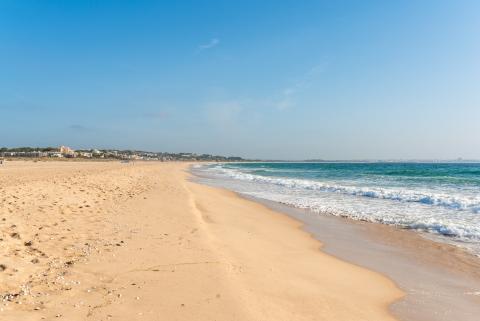 Meia Praia, Algarve