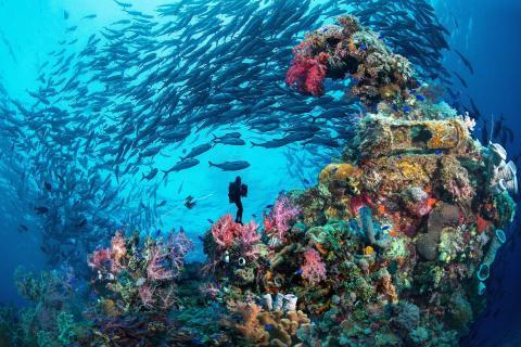 Chuuk, Micronesia.