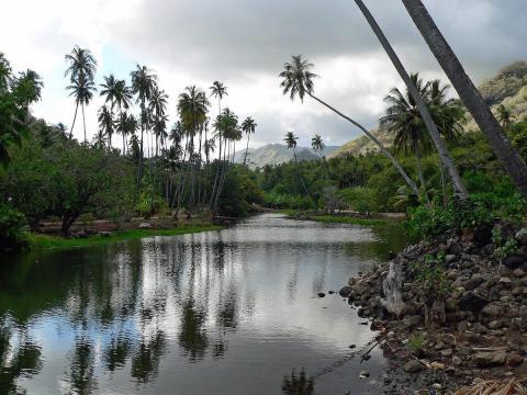 Nuku Hiva (Islas Marquesas)