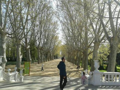 Parque de Los Campos Elíseos.