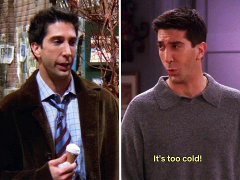 Ross en 'El de cuando Ross sale con una estudiante' y 'En el que a Chandler no le gustan los perros'.