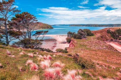 Isla Stewart (Nueva Zelanda)