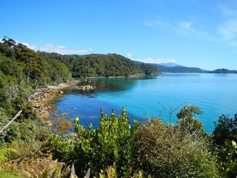 Stewart Island (Nueva Zelanda)