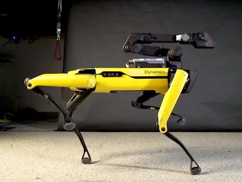 Boston Dynamics' robot dog.