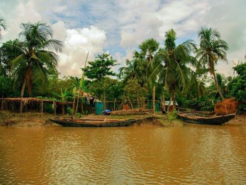 Los Sundarbans se forman en la unión de los ríos Ganges, Brahmaputra y Meghna.