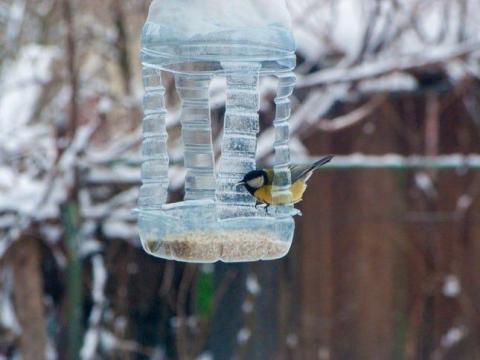 Envuelve la cuerda alrededor de la tapa de la botella y cuélgala.