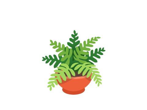 Planta en una maceta.