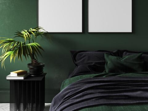 4. A move toward nature-inspired paint colors