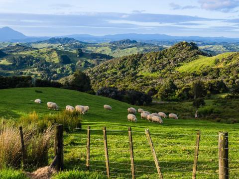 En Nueva Zelanda, puedes pasar del sol cálido a la lluvia fría en unos momentos.
