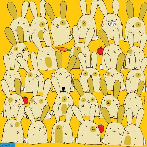 Encuentra el conejo sin pareja.
