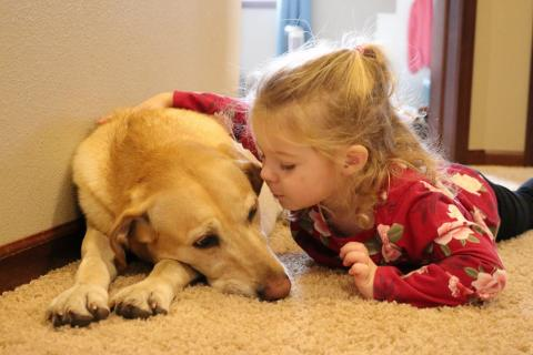 A child and her labrador. Brittany Schauer Photography/Getty