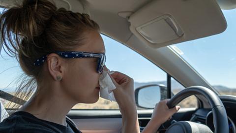 Conductores alérgicos: por qué tienen más riesgo de accidente en coche