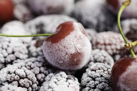 Fruta congelada.