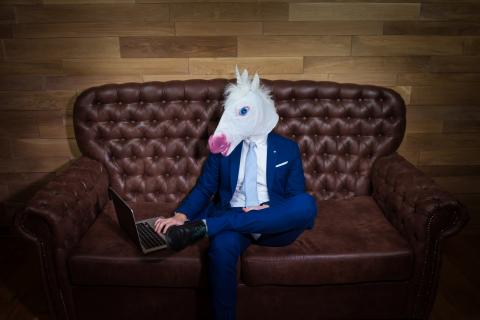 Un hombre disfrazado de unicornio