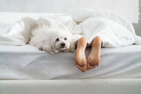 Mantén tus pies fuera de la sábana.