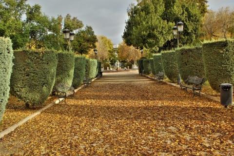 Parque Gasset.