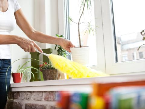 Should you clean your home with a feather duster?