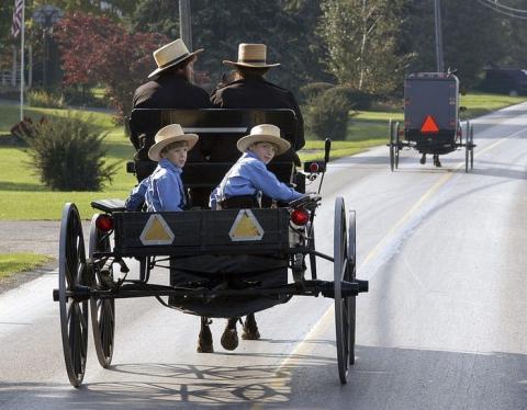 Las tecnologías de transporte que giraban en torno al caballo definieron el siglo XIX...