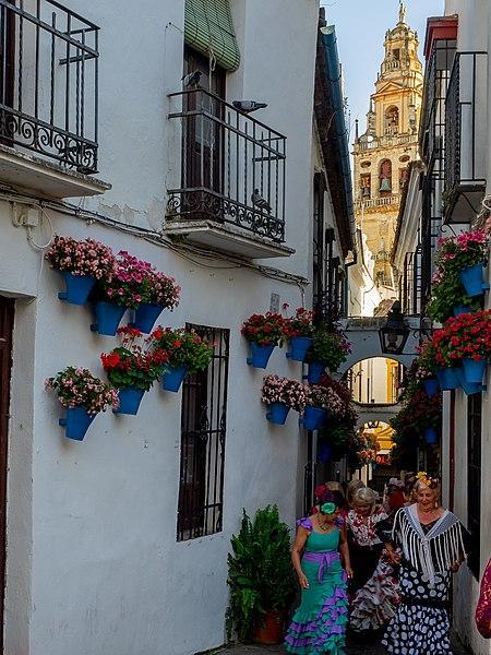 Calleja de las flores, Córdoba.