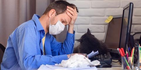 Cuántos empleos se han perdido por el coronavirus