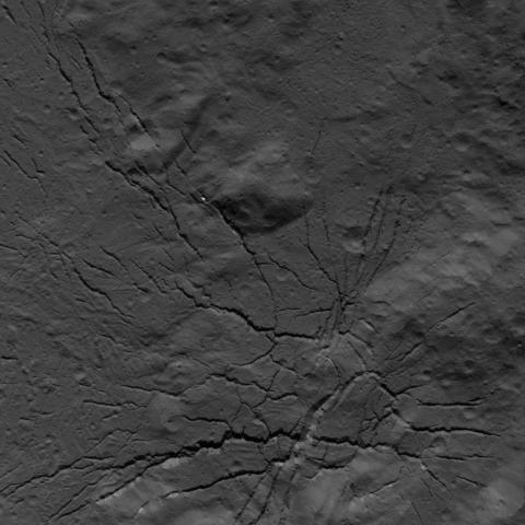 Una red de fracturas en el suelo del cráter Occator, fotografiada por la nave espacial Dawn de la NASA el 26 de julio de 2018 desde una altitud de unos 152 kilómetros.