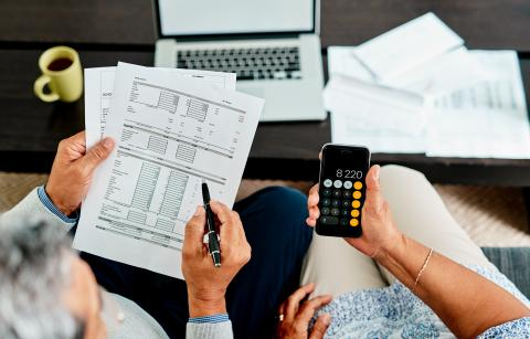 Llevar la contabilidad doméstica.