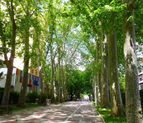 Paseo de la Senda, Vitoria.