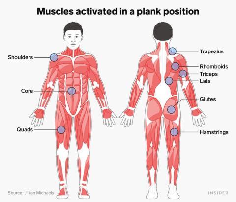 Las planchas son un entrenamiento de cuerpo completo