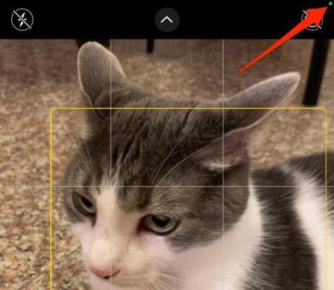 Indicador de cámara en uso en iOS 14.