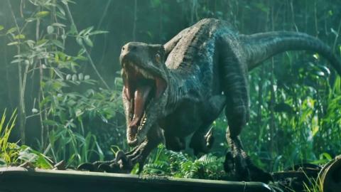 Jurassic World - Velocirraptor