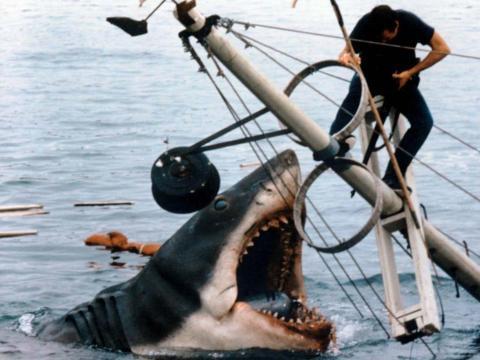 El viejo Bruce en 'Tiburón'.