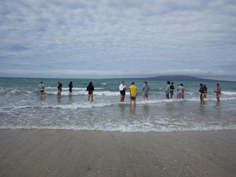 Takapuna Beach, Nueva Zelanda.