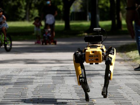 Robot Spot de Boston Dynamics.