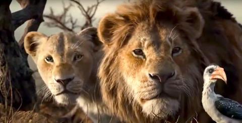 Jon Favreau dirigió el nuevo remake de 'El Rey León'.