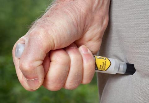 La epinefrina se inyecta en la parte superior del muslo con una jeringa como tratamiento de emergencia para una reacción alérgica aguda a la comida o a las picaduras de insectos.