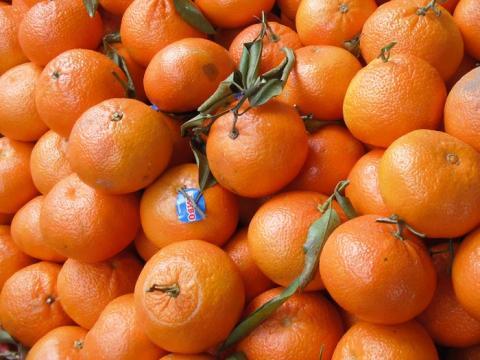 Las mandarinas son un buen aperitivo.