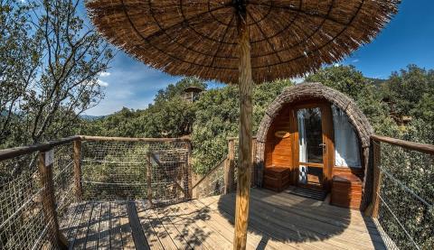 Cabaña en el árbol Airbnb