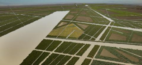 Vista aérea de los canales de riego.
