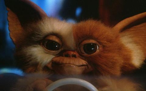 'Gremlins'.