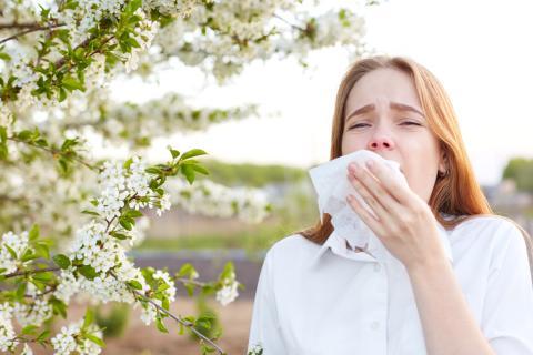 alergia primavera polen