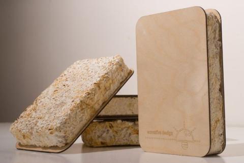 Greensulate, material a partir de micelio.