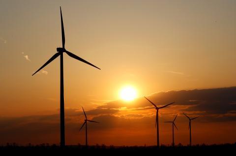 8 compañías eléctricas que solo ofrecen energía 100% renovable.