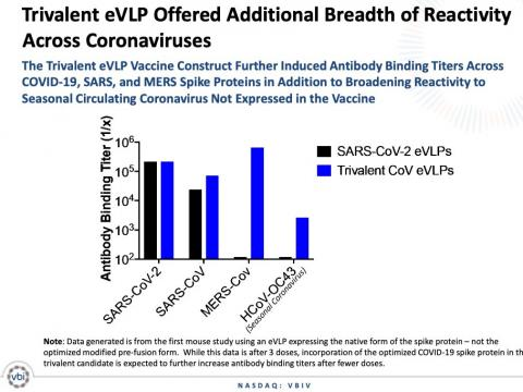 Las vacunas de VBI podrían servir para varios coronavirus